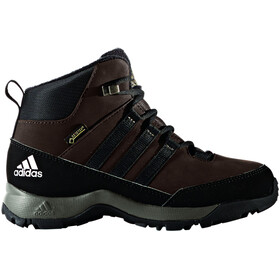 adidas CW Winter Hiker GTX Chaussures Enfant, brown/core black/simple brown